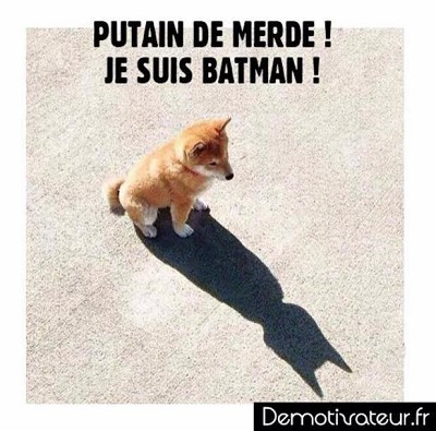 blagues animaux