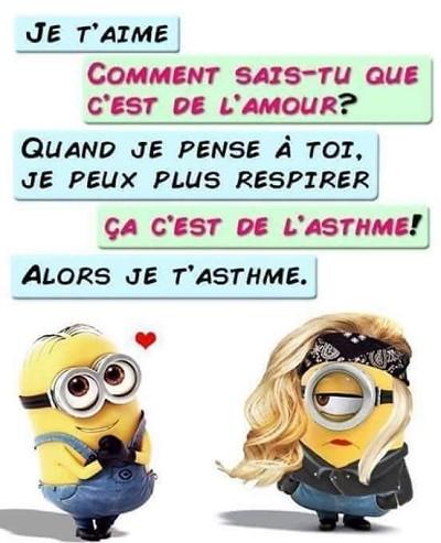 Blagues d 39 amour - Minion amoureux ...
