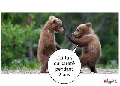 blagues karate