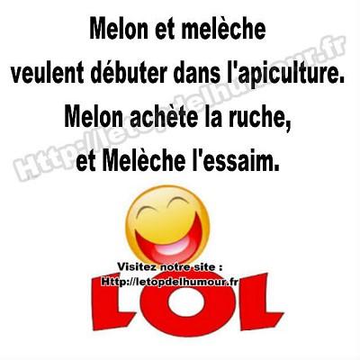 blagues melon meleche