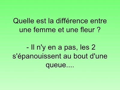 blagues quelle est la difference entre