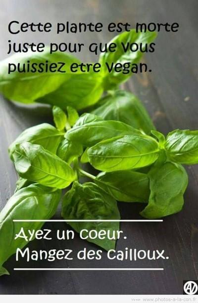 blagues vegan