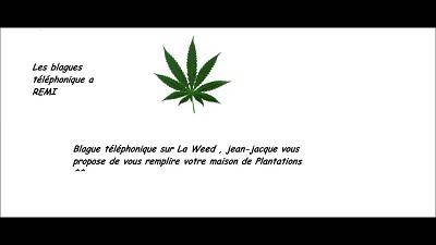 blagues weed
