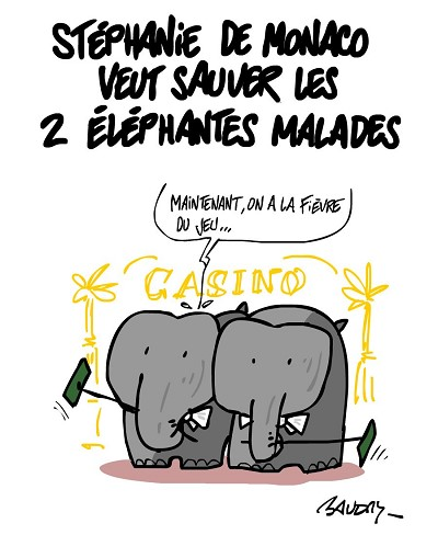 blagues zoo